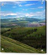 Yellow Stone National Park Where Bears Live  Acrylic Print