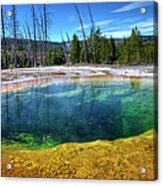 Yellowstone Hot Spring Acrylic Print
