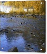 Yosemite River In Yellow Acrylic Print