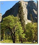 Yosemite Valley Serenity Acrylic Print
