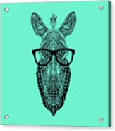 Zebra In Glasses Acrylic Print