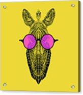 Zebra In Pink Glasses Acrylic Print