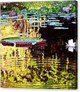 Ripples On A Quiet Pond Acrylic Print