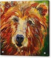 A Bunch Of Bear Acrylic Print