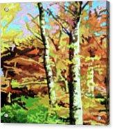Autumn's Spectacular Display Acrylic Print