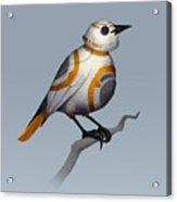 BB Bird Acrylic Print