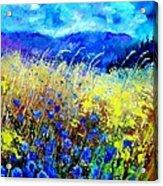 Blue cornflowers 67 Acrylic Print