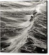 Body Surfing Acrylic Print