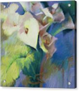 Cala Lilies Acrylic Print