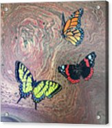 California Butterflies Acrylic Print