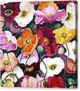 Cascade Of Poppies Acrylic Print