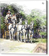 Coaching In Acadia- Carriage Driving Four In Hand Acrylic Print