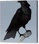 Crow Vader Acrylic Print