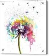 Dandelions abstract painting Acrylic Print