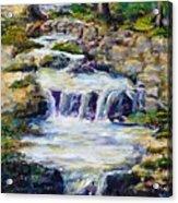 Fern Dell Creek Noon Acrylic Print
