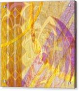 Gold Fusion Acrylic Print