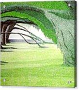 Grove Illusion Acrylic Print