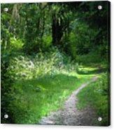 Invitation Path Acrylic Print