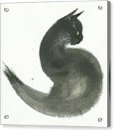Keen Acrylic Print