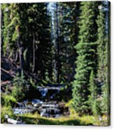 Kings Creek cascades Acrylic Print