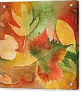 Leaves III Acrylic Print