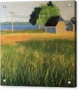 Marshview, Leaman Rd Acrylic Print