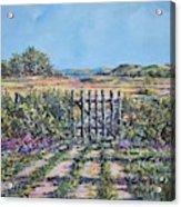 Mary's Field Acrylic Print