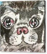My Little Black Pug Acrylic Print
