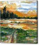 Ponderosa Marsh Deep Winter Acrylic Print