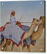 Proud of my camels Acrylic Print