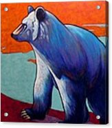 Return of the Spirit Bear Acrylic Print
