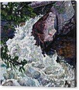 Rushing Stream Colorado Acrylic Print