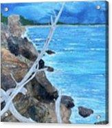 Salinas seashore Acrylic Print