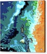Sea Gull Over Ocean Acrylic Print