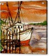 Seaking Acrylic Print