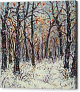 Snowing In The Forest Acrylic Print