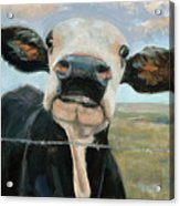 Something in the way she Moos Acrylic Print