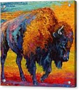 Spirit Of The Prairie Acrylic Print