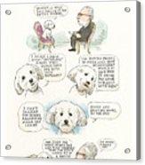 Ted Cruz's Dog Dishes Acrylic Print