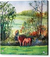 The Two Horses Acrylic Print