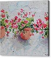 Tuscan Flowers Acrylic Print