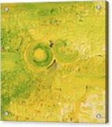 Yellow dot Acrylic Print