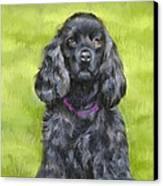 Budwood The Black Cocker Spaniel Canvas Print