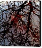 My Reflection Bucket Canvas Print by Steven Valkenberg