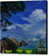 Philippine Countryside Canvas Print