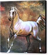 Wild Horse. Canvas Print