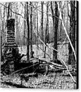 072606-32bw  Once Upon A Time There Was A Cabin In A Forest.. Canvas Print