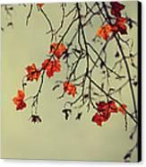 Autumn Canvas Print by Diana Kraleva