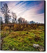 Autumn Morning Canvas Print by Davorin Mance