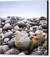 Beach Pebbles Canvas Print by Elena Elisseeva
